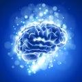 Mozek modrý