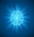 Brain blueprint vector elements are layered separately in vector file Royalty Free Stock Image
