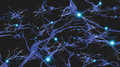 Brain cells with electrical firing Stock Photography