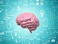 Mozog 3