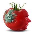 Brain decay dementia aging as memory loss concept human cancer disease alzheimer illness medical icon tomato mold rotting shape Royalty Free Stock Photo