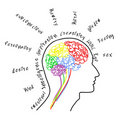 Brain drawing with wording Royalty Free Stock Photos