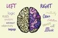 Brain function Royalty Free Stock Photo