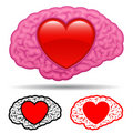 Brain with heart thinking of love Stock Photos