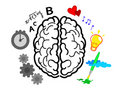 Brain hemispheres Stock Photography