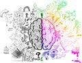 Mozog hemisféry povrchné čmáranice