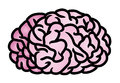 Brain Icon Fotos de Stock