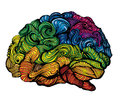 Brain Idea illustration. Doodle vector concept about human brain. Creative illustration with colored brain and grey