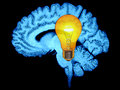 Brain Idea light Bulb  Stock Images