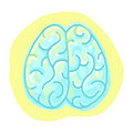 Brain illustration Stock Photos