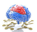 Brain and keys at registration information associated with the resolution of intellectual problems Stock Image