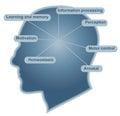 Brain main function Royalty Free Stock Photo