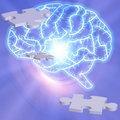 Brain Puzzle Stock Image