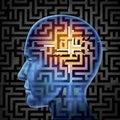 Mozek vyhledávání
