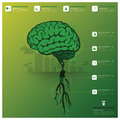 Brain tree and root infographic science background design template Royalty Free Stock Photography