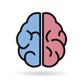 Brain vector icon over white Stock Photo