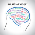 Brain at work Royalty Free Stock Photo