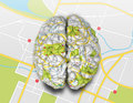 Brain wrapped simple road map texture laying flap road map Royalty Free Stock Images