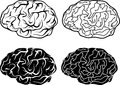 Brains and electronic brains vector illustration Royalty Free Stock Photos