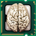 Brains inside illustration with human inserted in main processor unit as metaphor of new technologies Royalty Free Stock Photography