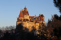 Bran castle golden hour transylvania s most famous in the beautiful afternoon light seen through fir tree branches vlad the Stock Image