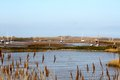 Brancaster staithe rich fenland creating natural harbours for sailing vessels in norfolk Stock Photo