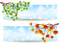 Branch banners vector illustration eps rgb use transparency and blend modes Stock Photos