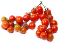 Branch of cherry tomatoes isolated on white background the Stock Images