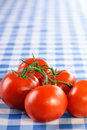 Branch five tomatoes background blue tablecloth Stock Photography