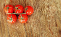 Branch of fresh cherry tomatoes Stock Photography