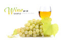 Branch of grapes and glass of wine Stock Images