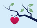 Branch with heart large growing Royalty Free Stock Photos