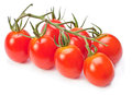 Branch red cherry tomatoes Royalty Free Stock Photo