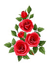 Branch of red roses vector illustration with rose buds and leaves isolated on a white background Stock Photo