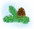 Branch of spruce with pine cone contains transparent objects eps Royalty Free Stock Image