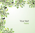 Branches with green leaves and birds fresh background or decoration Royalty Free Stock Image