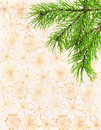 The branches of pine on xmas background Royalty Free Stock Images