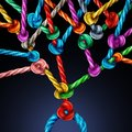 Branching Network Royalty Free Stock Photo