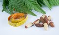 Brasil nuts measurement tape and green leaves Stock Photography