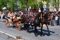 Brasov City celebration days (Romania) Royalty Free Stock Image