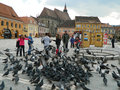 Brasov council square people pigeons and historic buildings in the of romania Stock Photos