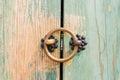 Brass door knocker Royalty Free Stock Photo