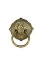 Brass lion Royalty Free Stock Photo