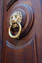 Brass lion head shaped door handle Royalty Free Stock Image