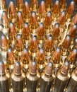 Brassy ammo shiny shells that are used for long range rifles Stock Image