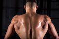 Brawny bodybuilder guy back rear view of young attractive caucasian muscular man with perfect body working out in fitness center Stock Image