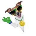 Brazil  fifa world cup  dog Royalty Free Stock Photo