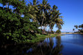 Brazil, Maceio, river estuary Royalty Free Stock Photo
