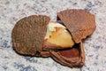 Brazil nut (Bertholletia excelsa) Royalty Free Stock Photo