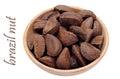 Brazil nut Royalty Free Stock Photo